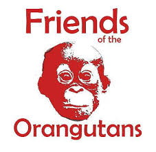 friends of orangutans